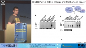 Molecular Insights Into KCNH1 Channels Current Inhibition