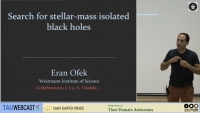 Searching for Isolated Black Holes in Wide Orbits