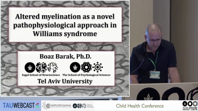 Altered myelination as a novel pathophysiological approach in Williams syndrome