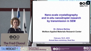 Nano-Scale Crystallography and In-Situ Nanodroplet Research by Transmission in SEM