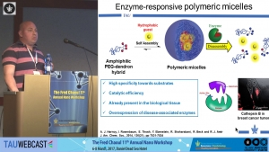 Controlling the Enzymatic Disassembly Rates of Poymeric Micelles Through Synthetic Precision