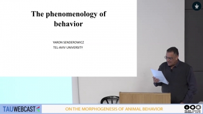 The phenomenology of behavior