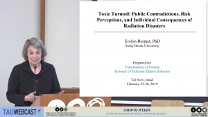 Toxic Turmoil: Public Contradictions, Risk Amplifiction, and Individual Consequences After Environmental Disaster