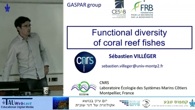 Functional Diversity of Coral Reef Fishes
